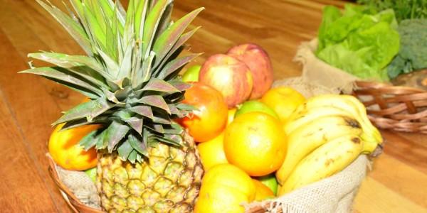Conferência de Segurança Alimentar e Nutricional