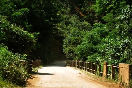Ponte sobre o rio Açungui, na Estrada do Cerne