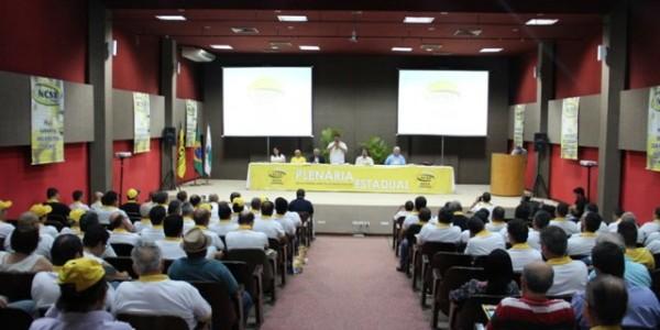 plenaria ncst